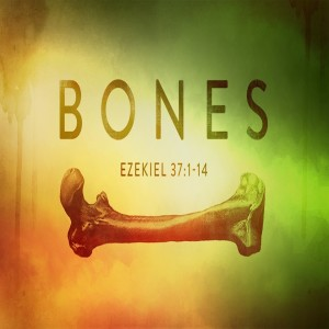 May 2, 2020 Ezekiel 37:1-14  Ezekiel and the Valley of Dry Bones