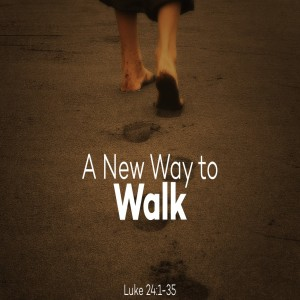 April 26 Luke 24:13-35  The Road to Emmaus--A New Way to Walk