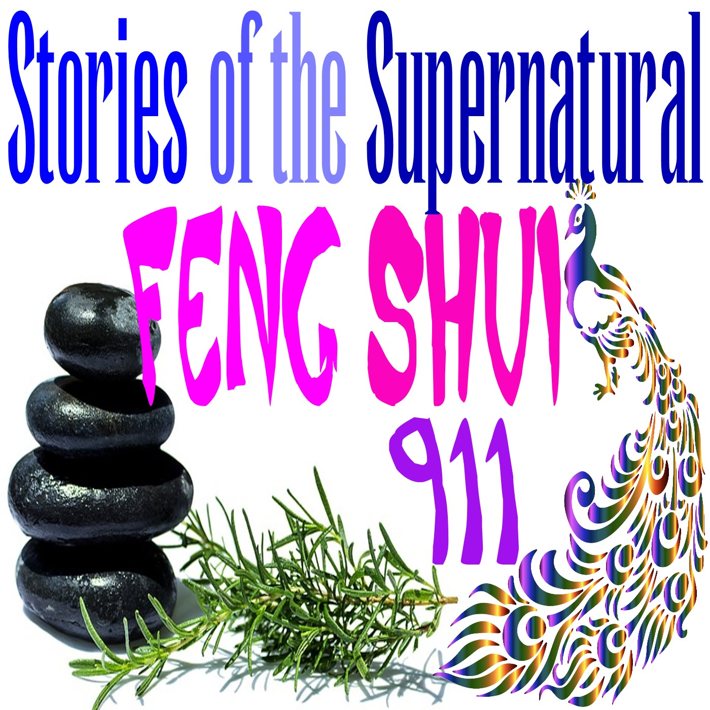 Feng Shui 911   Interview with Tisha Morris   Podcast