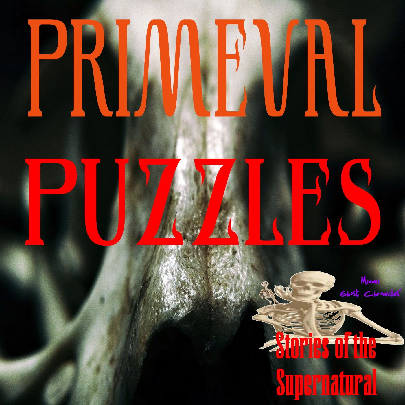 Primeval Puzzles   Interview with Brien Foerster   Podcast