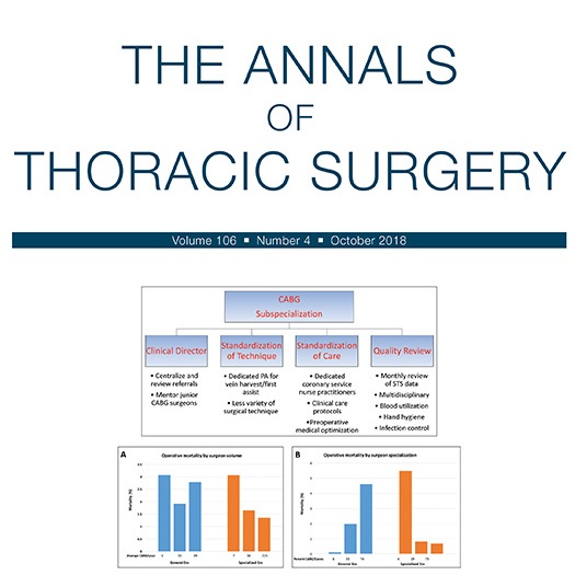 Beyond the Abstract: Individual Surgeon Performance in Adult Cardiac Surgery