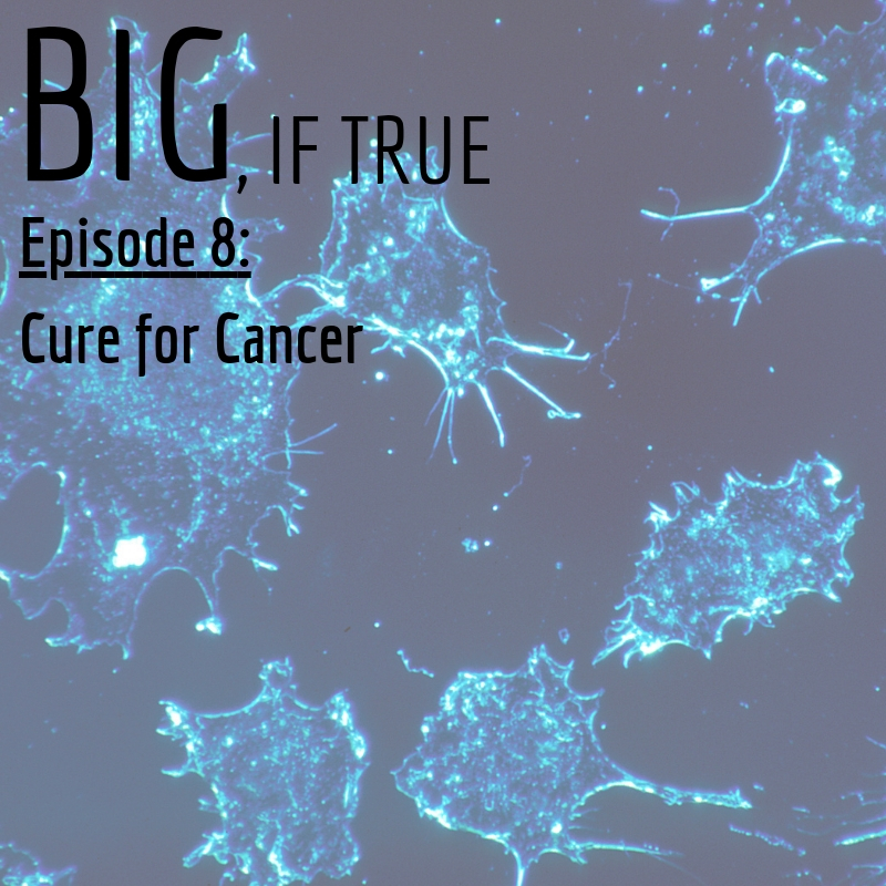 E8: Cure for Cancer