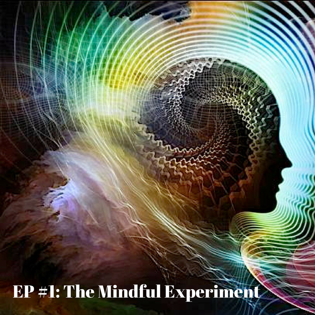 EP#1 - How to Experiment Life in a Mindful Way