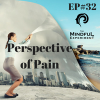 EP#32 - The Perspective We Created With Pain