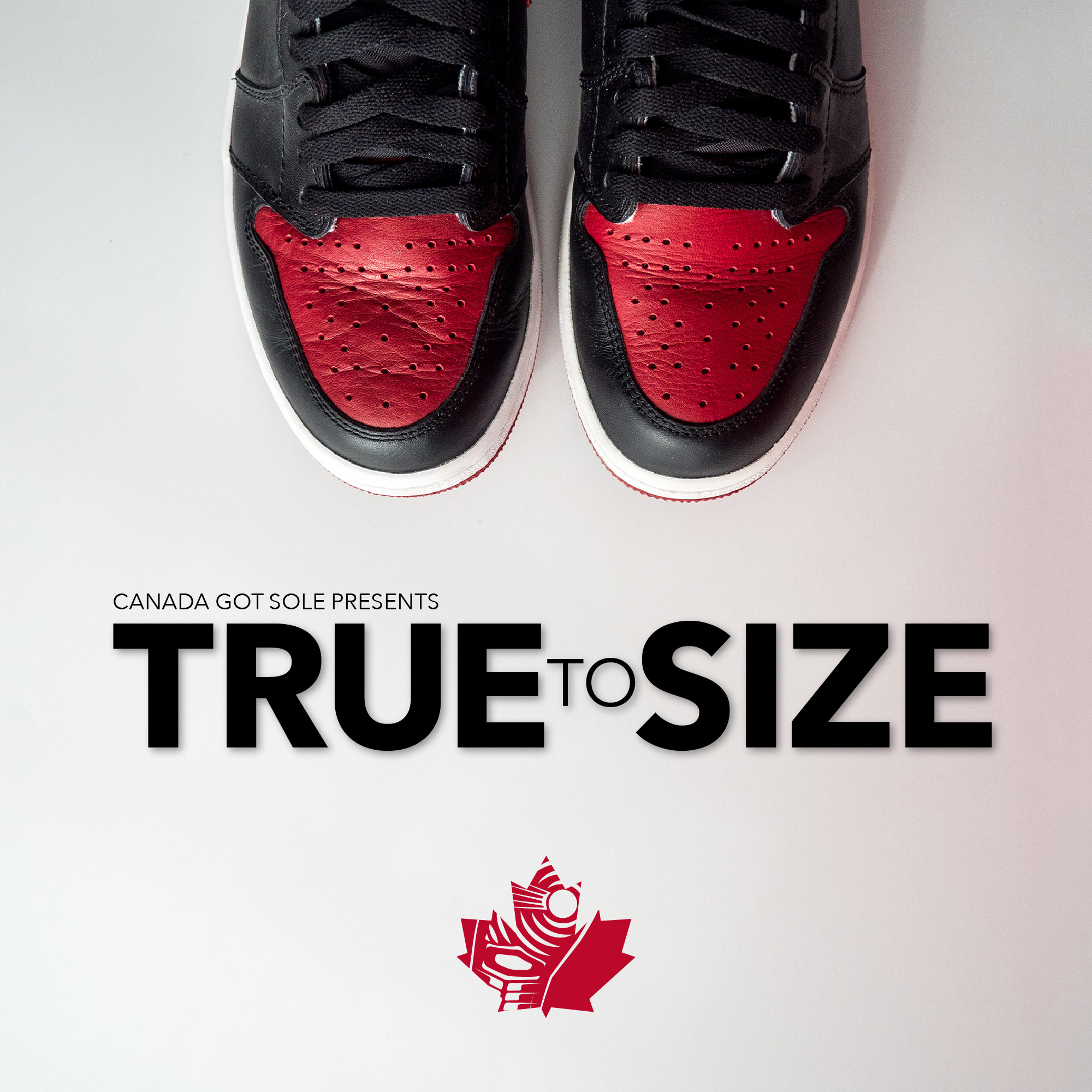 a6e1b582ab7f1 Best Episodes of True to Size
