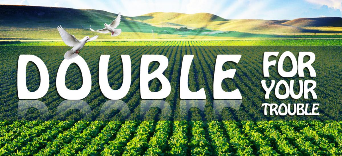 Double For Your Trouble - A.J. Dummitt
