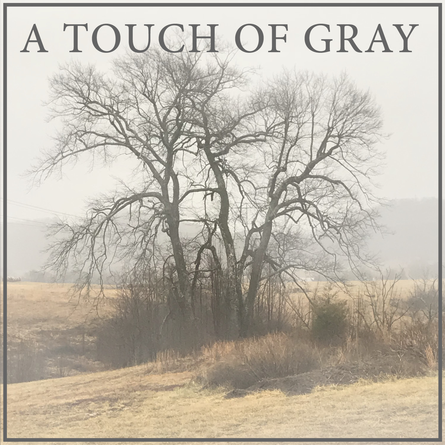 A Touch of Gray - Episode 12 - The Forecast is Gray