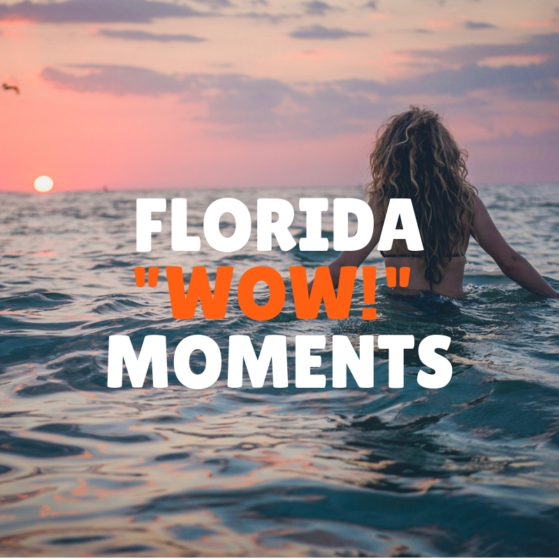 """Florida """"Wow!"""" Moments"""