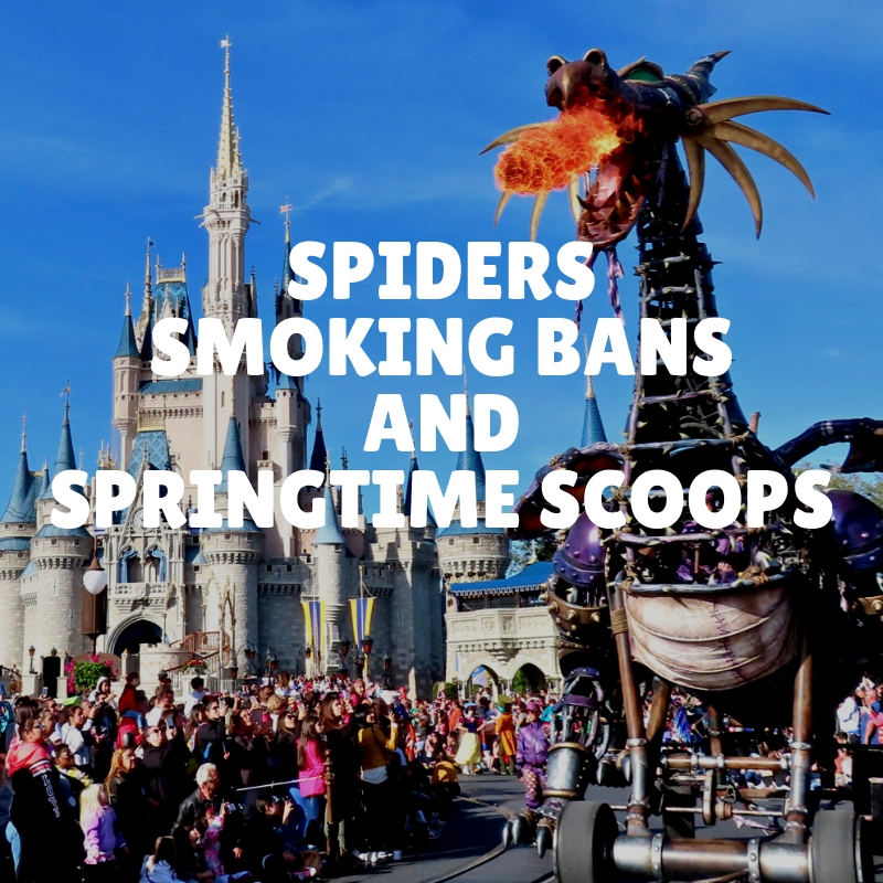 Spiders, Smoking Bans, and Springtime Scoops