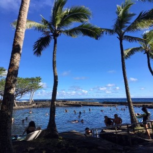 No White Christmas in Hawaii