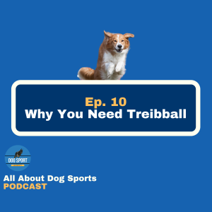 Why You Need Treibball