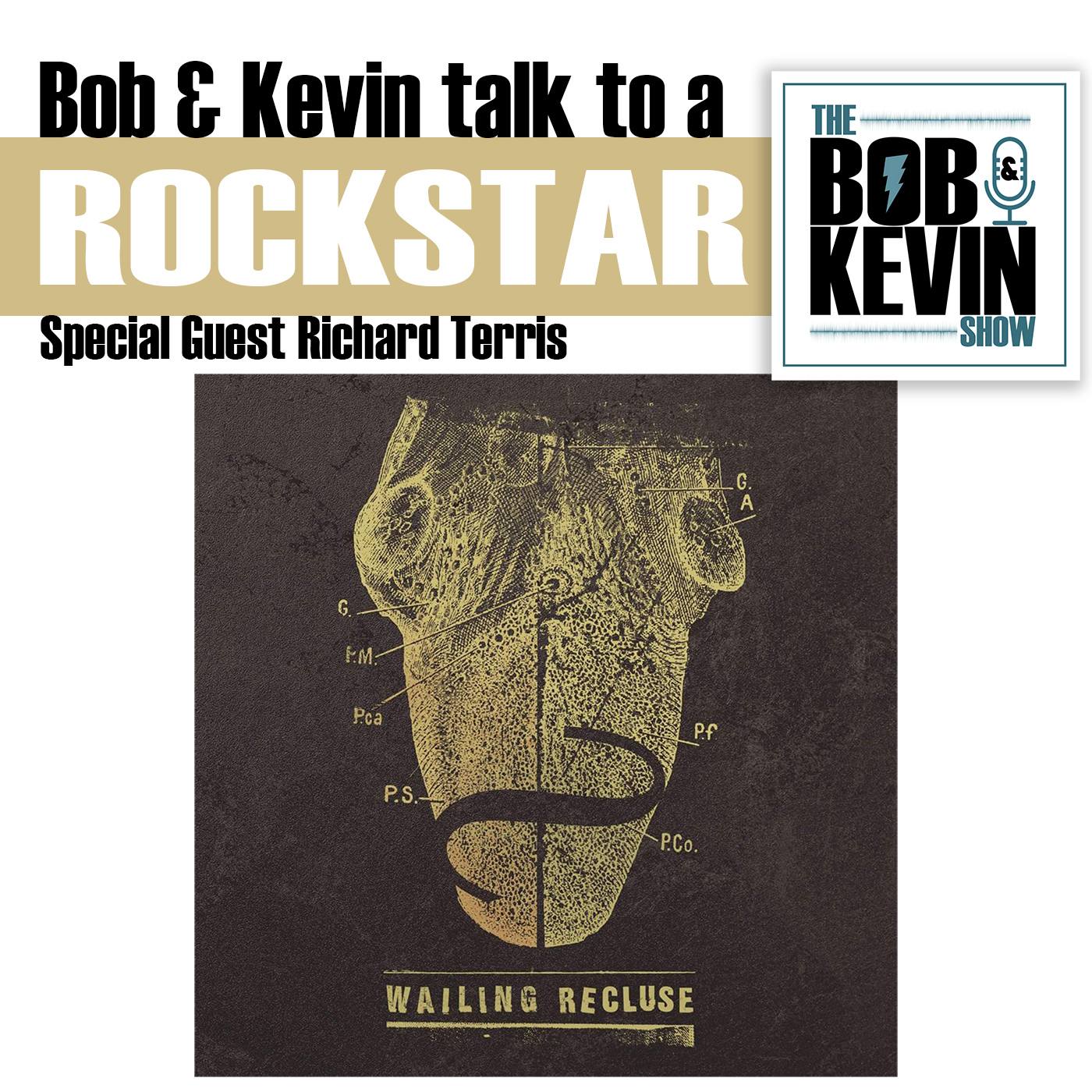Ep. 020 - Bob & Kevin talk tech with self-produced rockstar and application developer Richard Terris