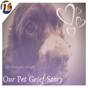 Our Pet Grief