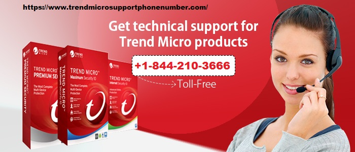 Dial Trend Micro Support Phone Number to Have a Live Support
