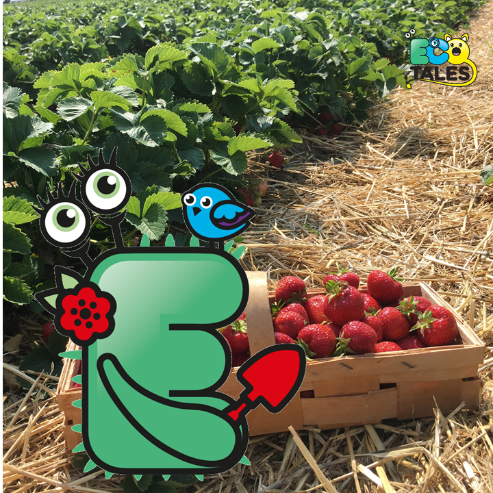EcoTales: Etta Earth and the Juicy Strawberry