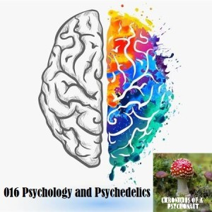 016 Psychology and Psychedelics