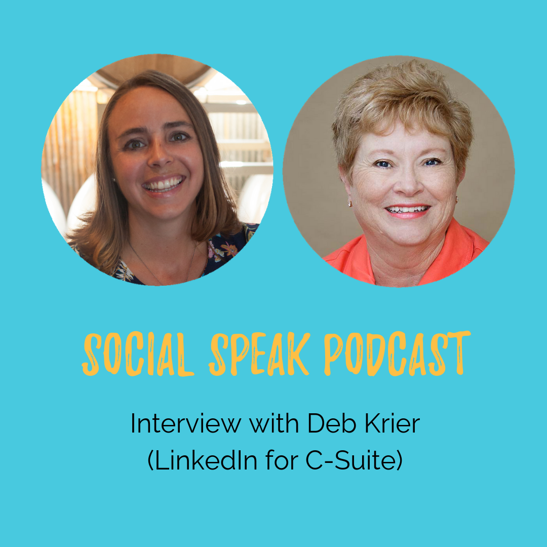 Interview with Deb Krier with The Business Power Hour