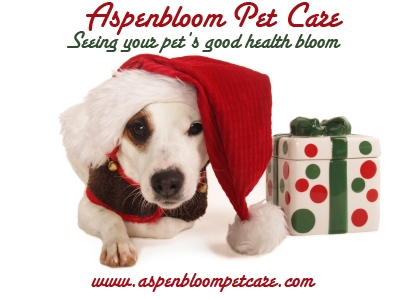 Healthy and Safe Pets for the Holidays