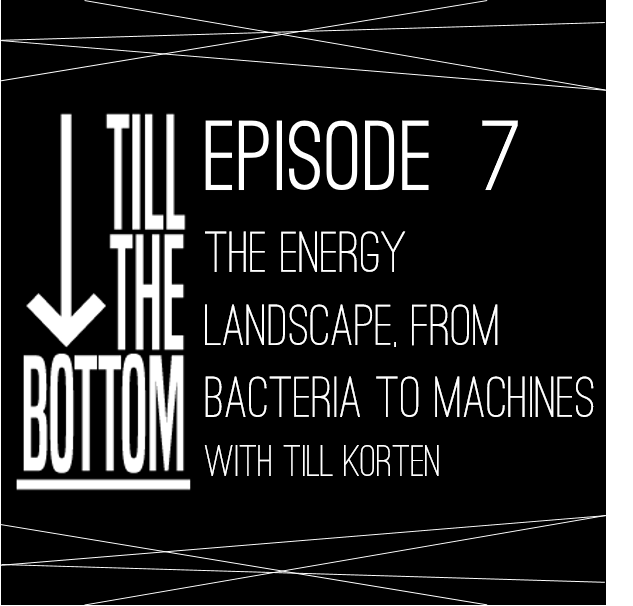 Episode 7. The intelligence landscape: from bacteria to machines
