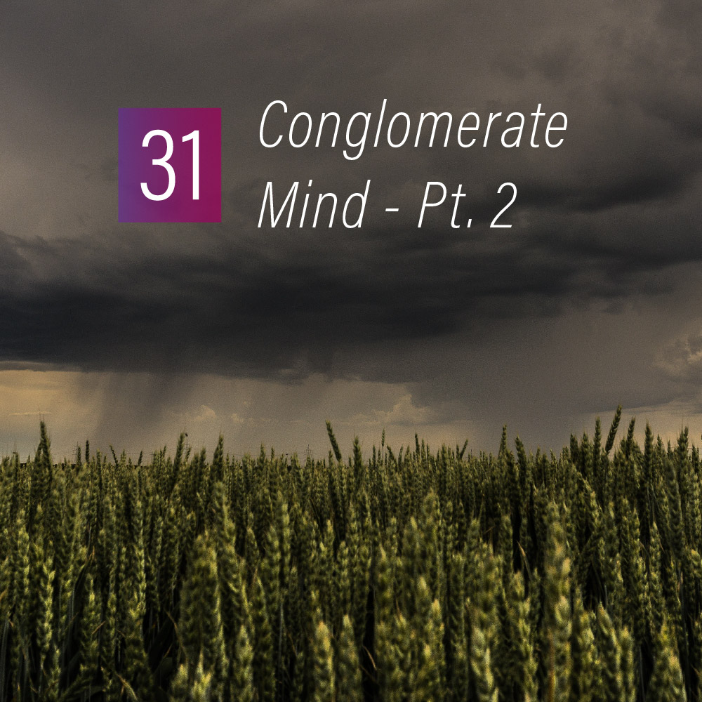 031 - Conglomerate mind Pt. 2