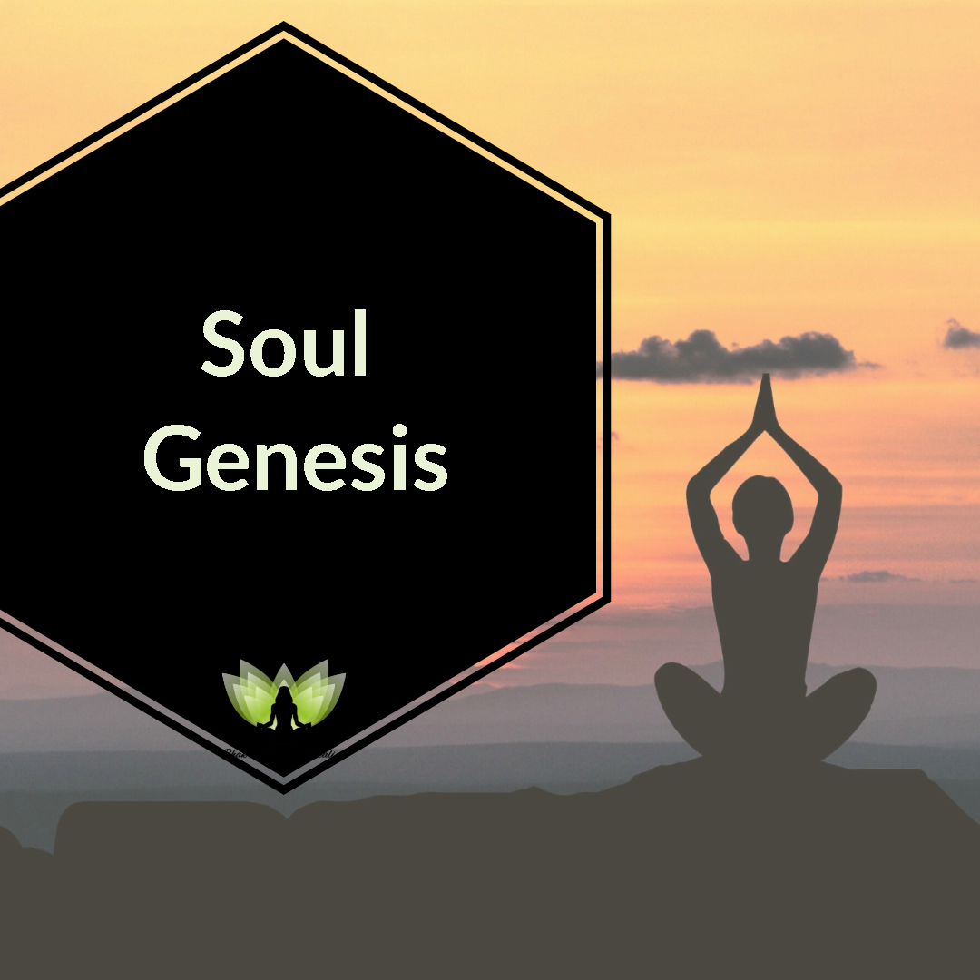 Soul Genesis with Barbara Ptak - Interview Hosted by Ayse Hogan