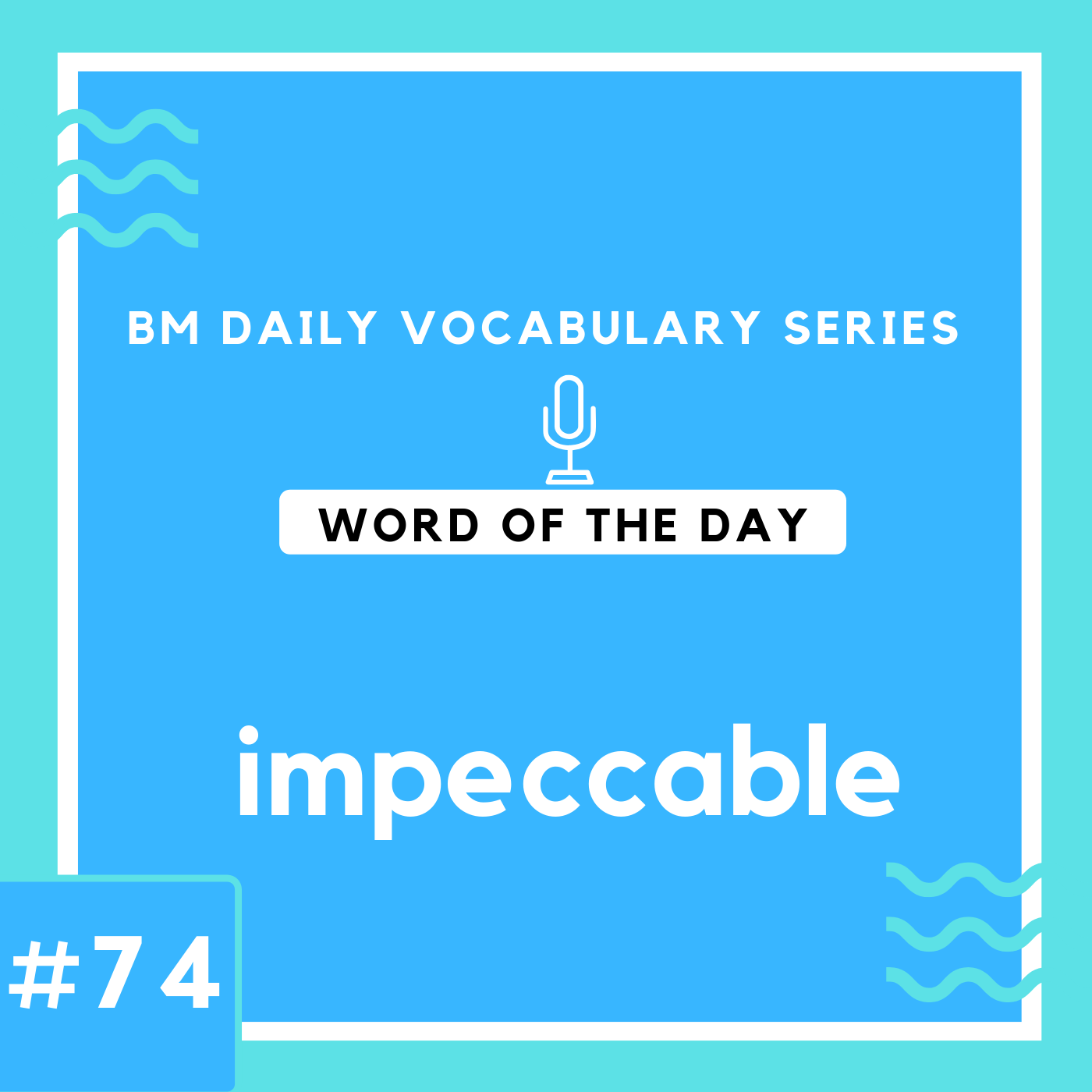 200 BM Daily Vocabulary #74 | impeccable
