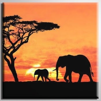 Secrets and Elephants