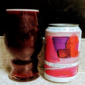 Untitled Art Marionberry Berliner Weisse - 9/11 Remembrance and Conspiracies