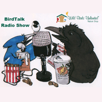 BirdTalk with Scott & David Menough - Nov 24, 2018