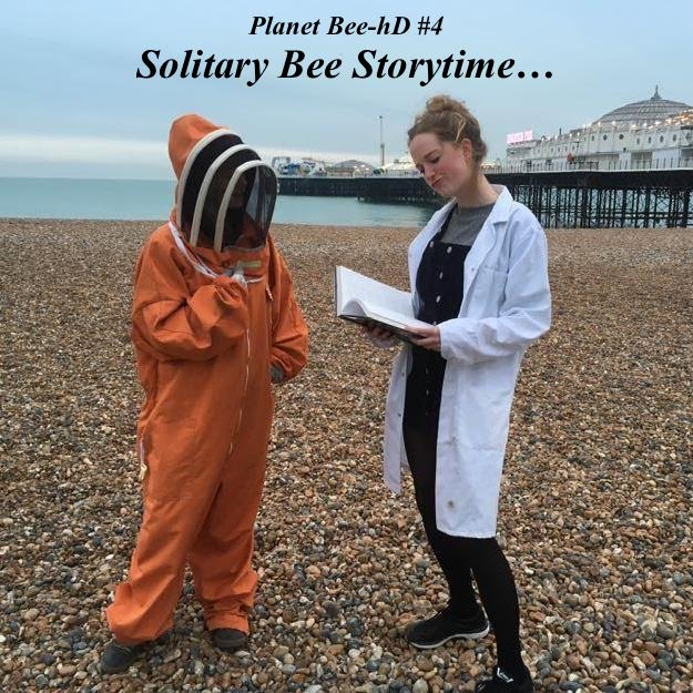 Planet Bee-hD #4: Solitary Bee Storytime