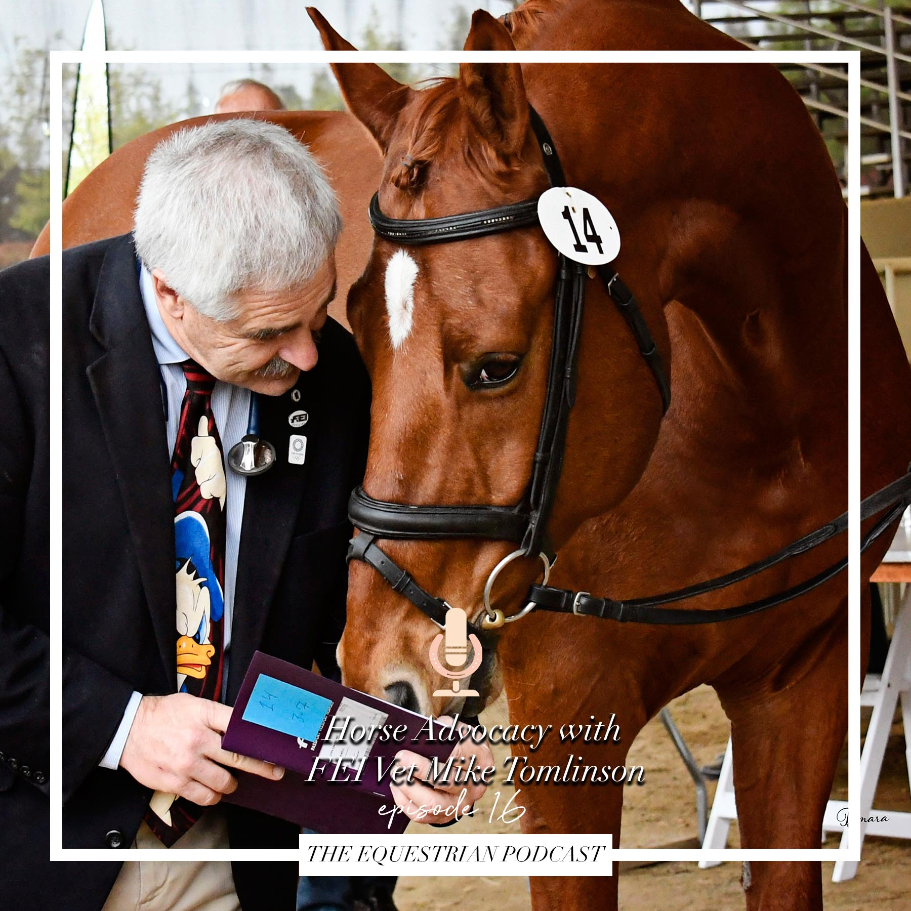 [EP] 16 Horse Advocacy with FEI Vet Mike Tomlinson