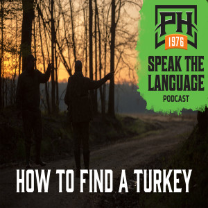 How To Find A Turkey