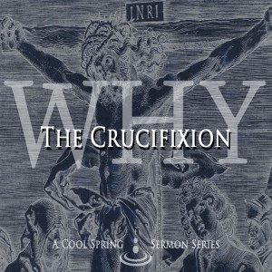 Why the Crucifixion