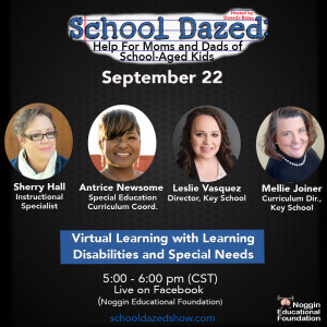 The One About Learning Disabilities, Special Needs, and Virtual Learning