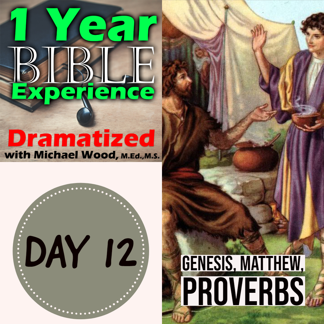 1 Year Bible Experience