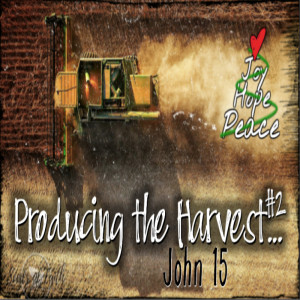 Producing the Harvest #2