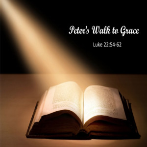 Peter's Walk to Grace