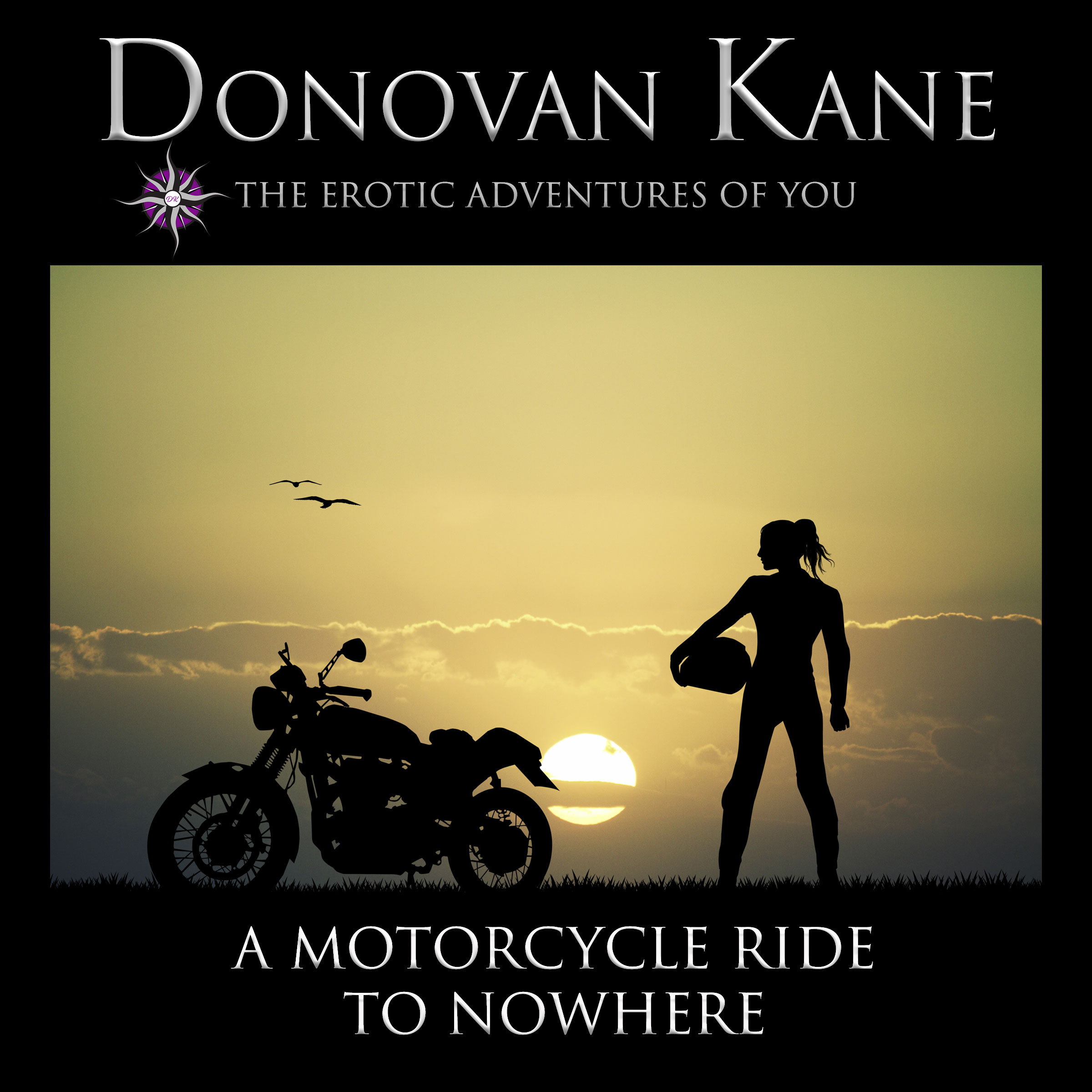 A Motorcycle Ride to Nowhere: The Erotic Adventures of You