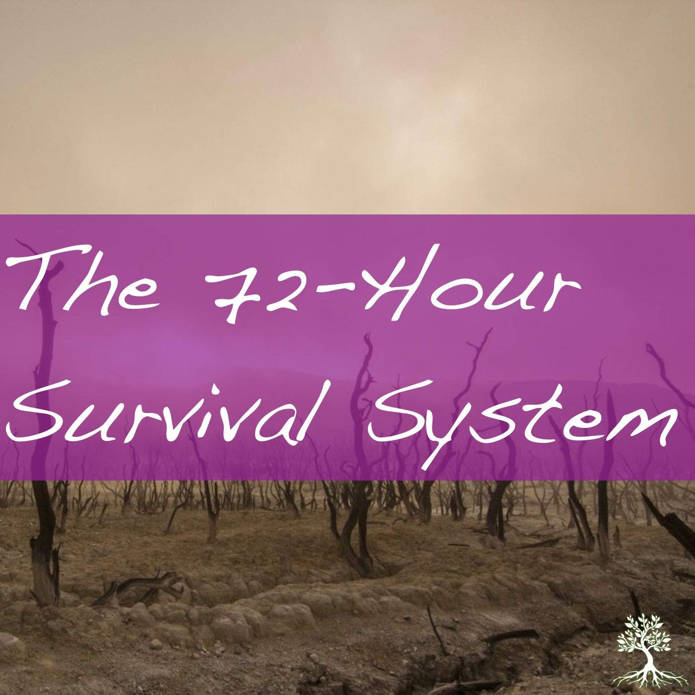 The 72-Hour Survival System (Chad Brekke 3/10/19)