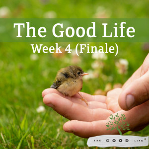 The Good Life: Week 4 Finale (Musa Filibus 08/11/19)