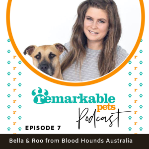 07. Zero to Hero. Remarkable story of a rescue dog with Bella from Blood Hound Australia