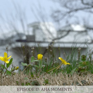 Episode 17: Aha Moments