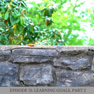 Episode 31: Learning Goals, Part Two