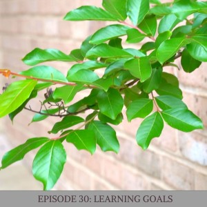 Episode 30: Learning Goals