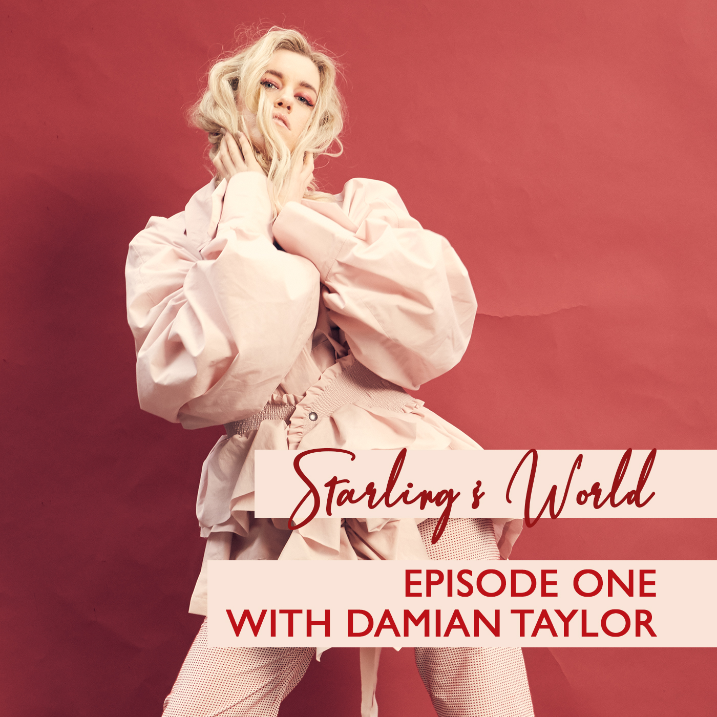 Starling's World meets Damian Taylor, Grammy-nominated Producer - Episode 1
