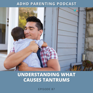 Ep #87: Understanding what causes tantrums