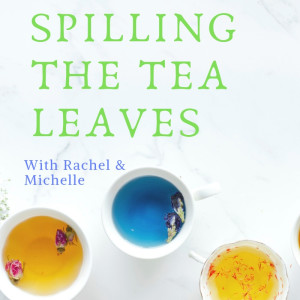 Introduction to Rachel and Michelle