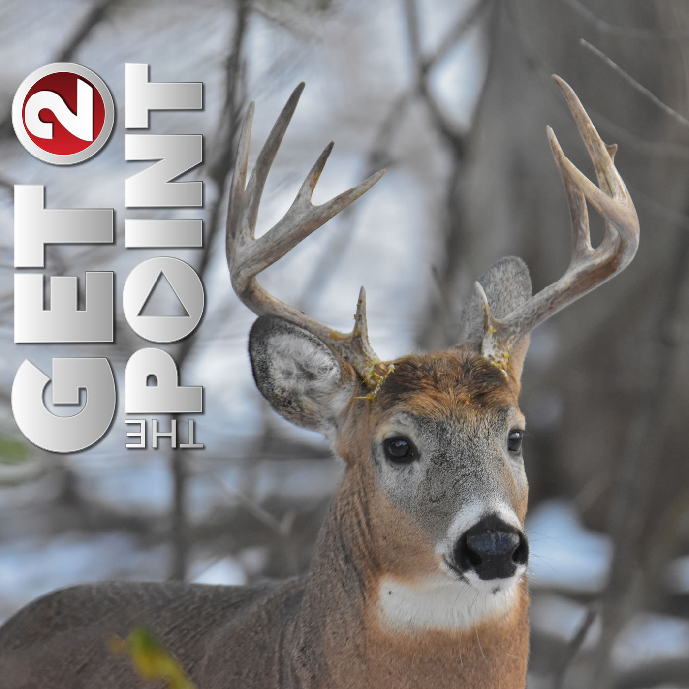Deer Hunt 'Pointers' with Jeff Alexander and the WI DNR
