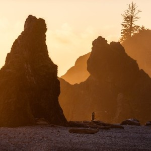 Episode 2.10: A Virtual Tour of Olympic National Park
