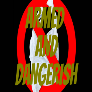 Armed and Dangerish by Alex, Eric, Lily and Coley